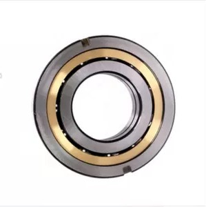 NTN/SAS series Ball Bearing Deep Groove Ball Bearing
