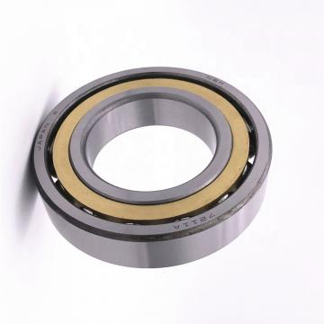High Precision Ball Bearings for Auto Parts 6202 C3 2RS NSK Motorcycle Parts Pump Bearings Agriculture Bearing