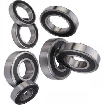 Equvialent Gmn One Way Ball Bearings Fkn6203-2RS, Fkn6204-2RS, Fkn6205-2RS, Fkn6206-2RS